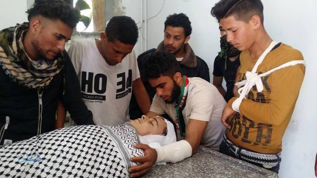 الشهيد تحرير أبو سبلة