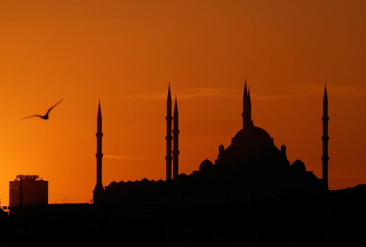 بين إسطنبول وغزّة: أنعودُ بعدقليل؟